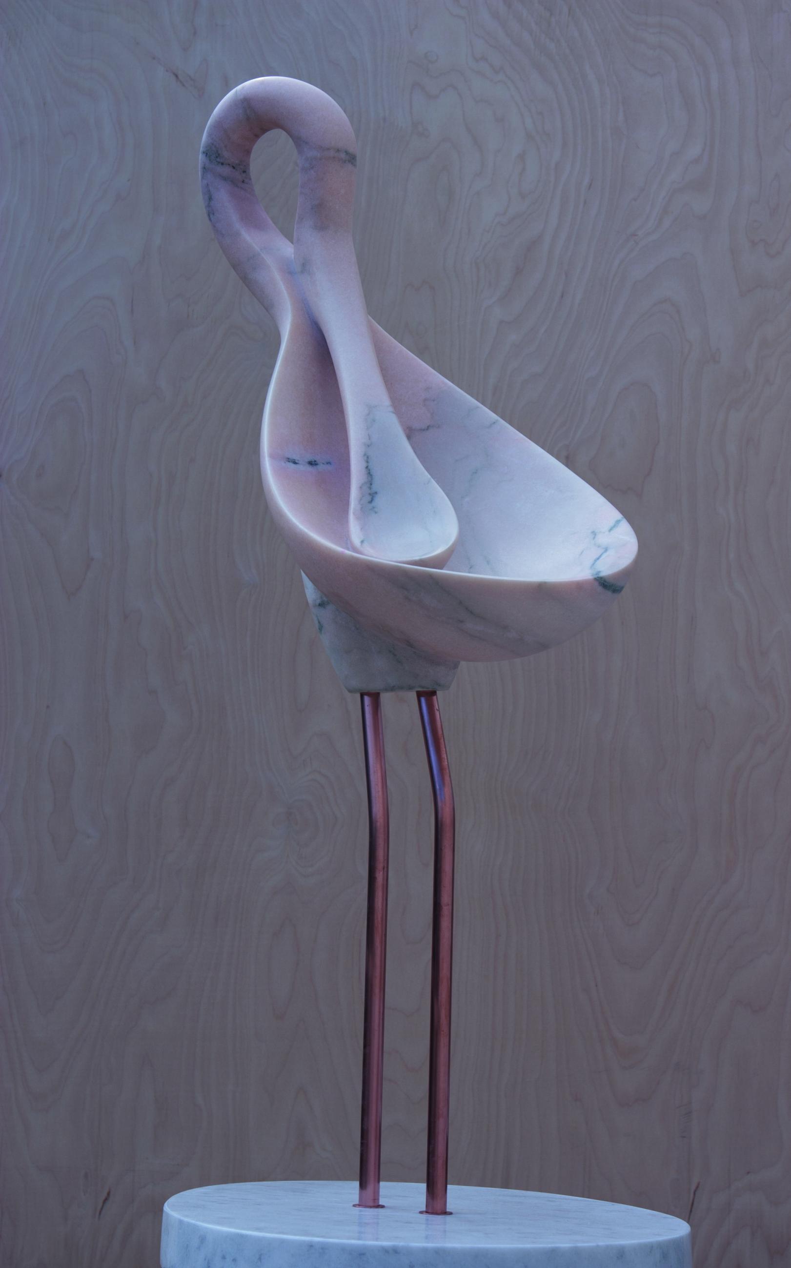 Spoonbill roseate
