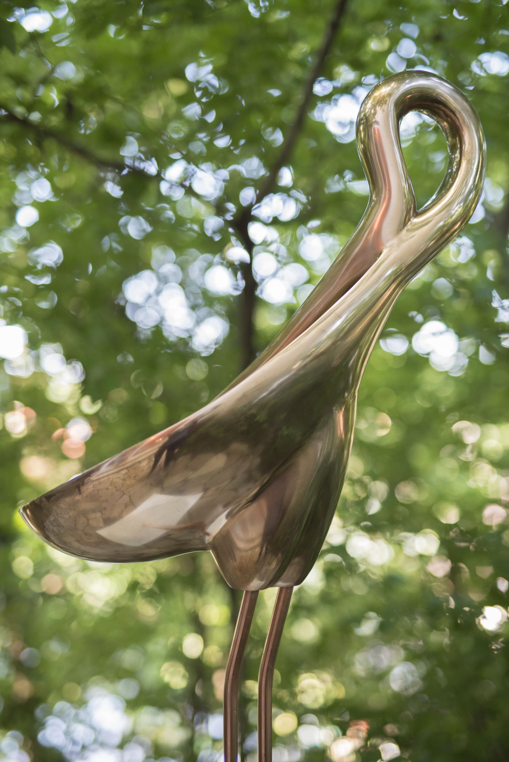 Spoonbill bronze