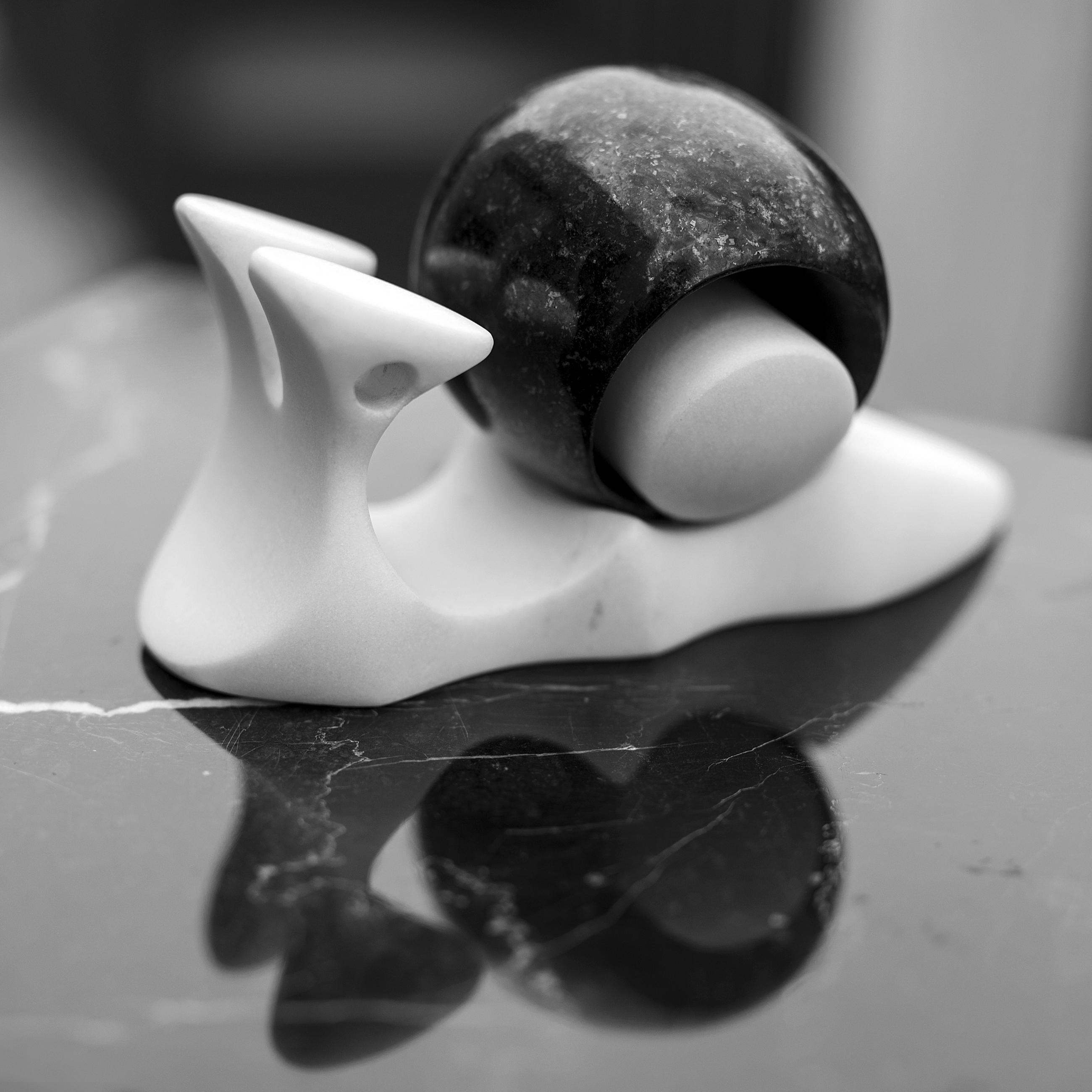 stone snail